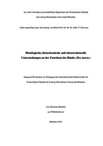 edoc pdf