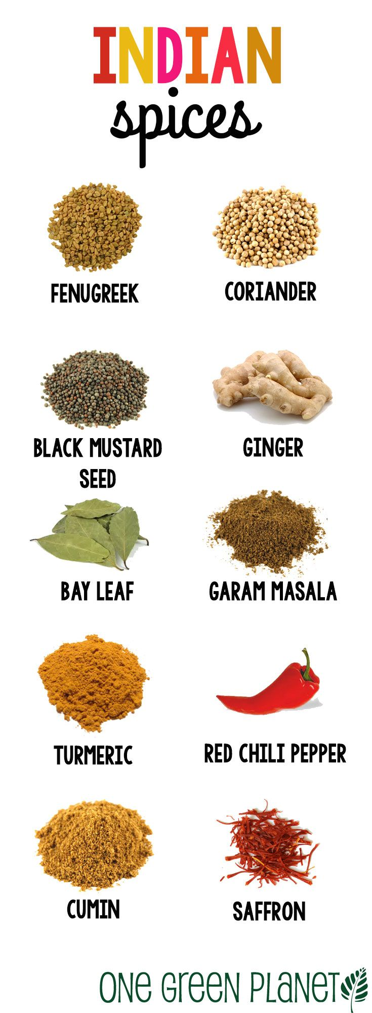 indian spices list with images pdf