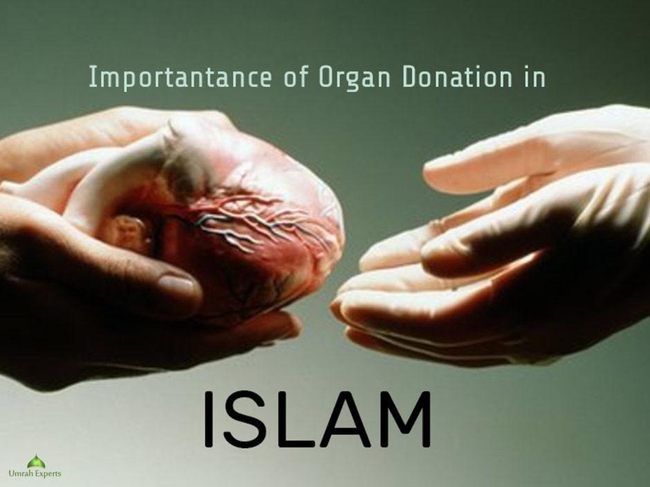 importance of organ donation pdf