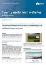 irish foreign births register guide