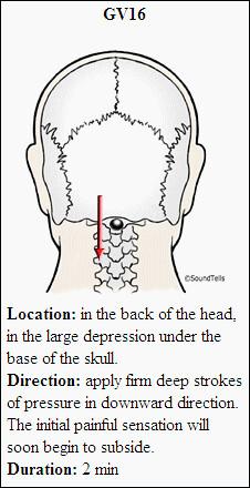lumbar spondylosis exercises pdf