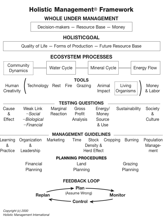 holistic management allan savory pdf