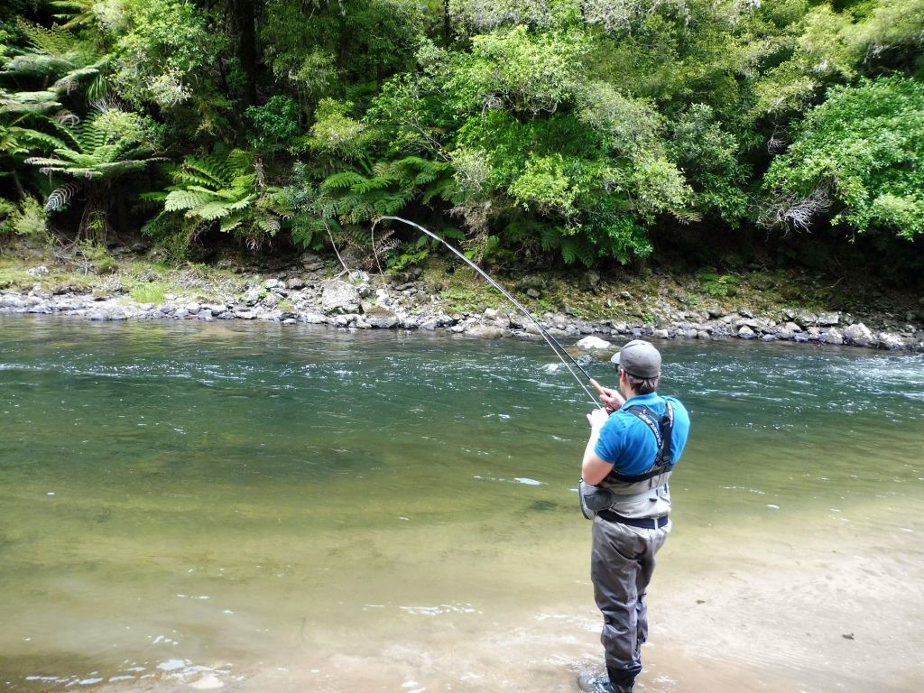 golden bay trout fishing guide