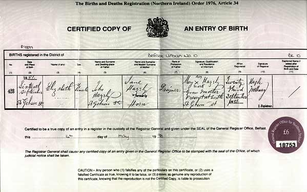 irish foreign births register guide