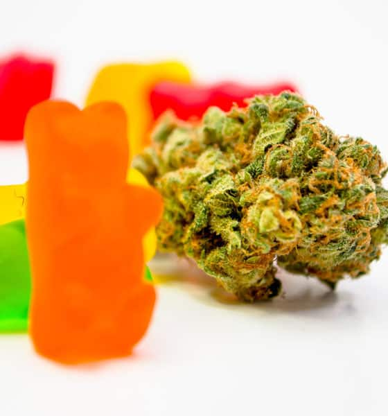 high times guide to edibles