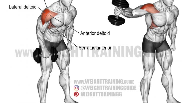 lateral raises instructions
