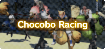 ff14 race chocobo breeding guide