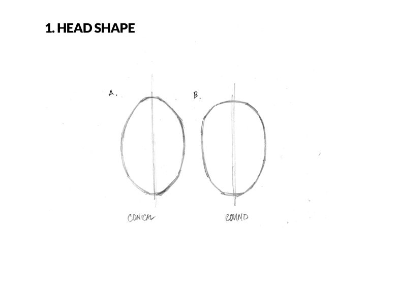 face sketch guide