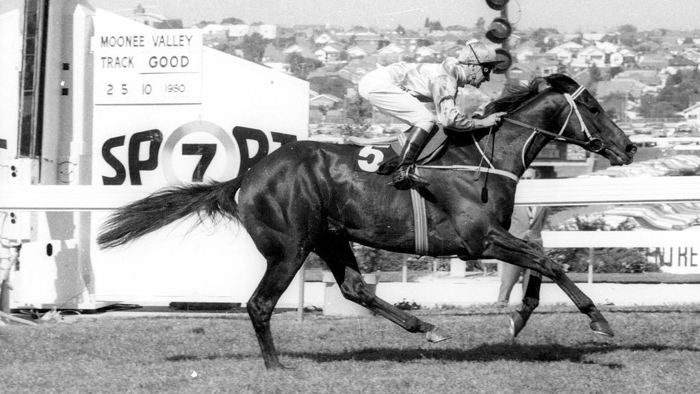 herald sun horse racing form guide digital