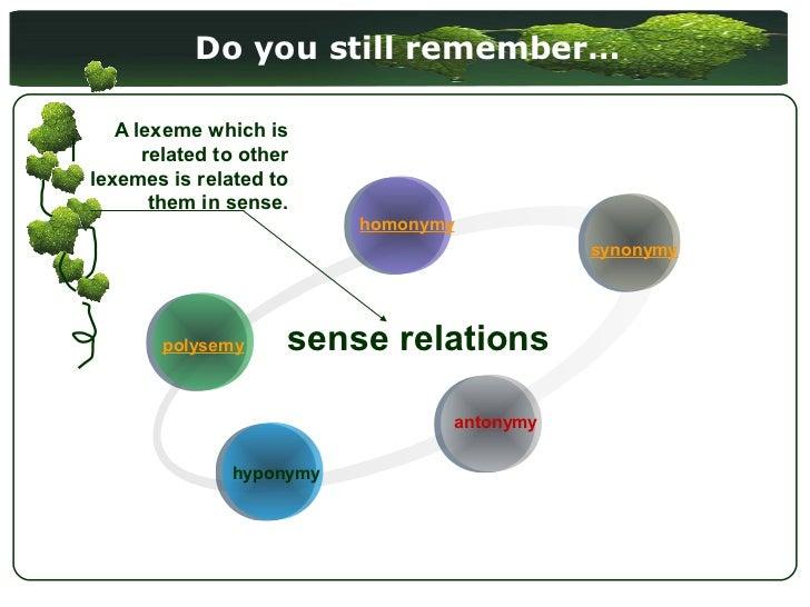 lexical semantics sense relations pdf